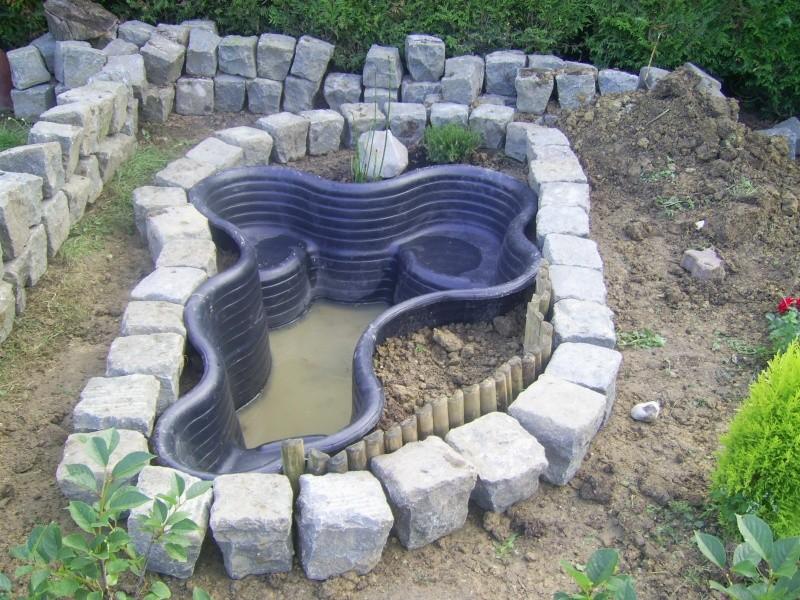 Bassin pour 9 tortue page 2 for Bassin exterieur pour tortue de floride
