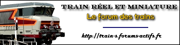 train r�el et miniature