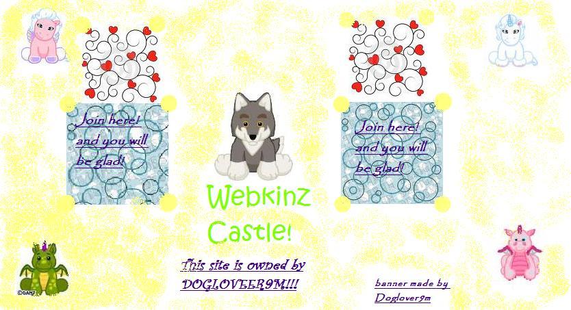Webkinz Castle!!!