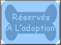 A L'Adoption...